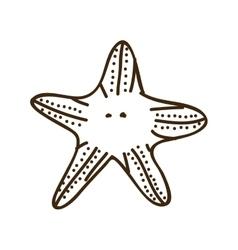 silhouette starfish animal marine design vector image