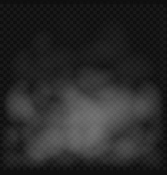 fog or smoke background vector image
