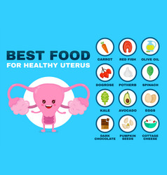 best food for strong uterus strong healthy vector image