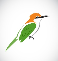 Bird green bee eater vector