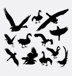 Duck goose swan eagle bird silhouette vector