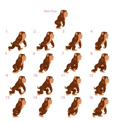 Animation of gorilla walking vector