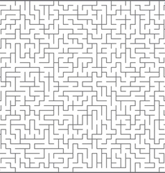 of maze vector image