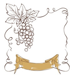 Wine label with a bunch of grapes and ribbon vector