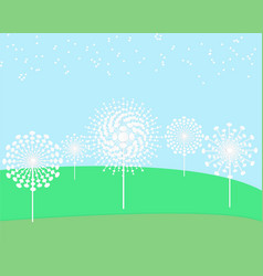 dandelion flower field vector image vector image