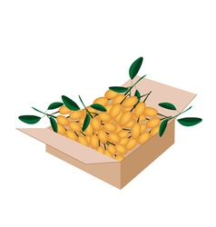Fresh juicy burmese grape in a shipping box vector