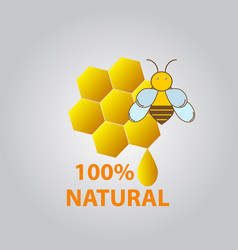 honey and bee icon vector image