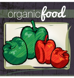 Organic food vector image vector image