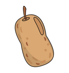 Potato food fresh image vector