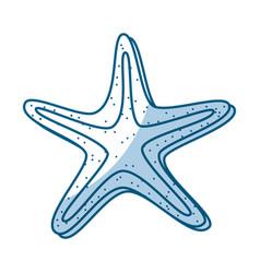 Shadow starfish cartoon vector