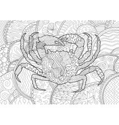 Sea crab with high details vector