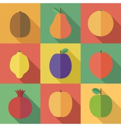 Raw fruits icons vector