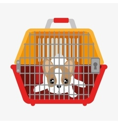 Cute dog puppy inside plastic carrier vector