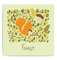 forest card with acornsleaves and squirrel vector image