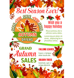 autumn sale banner of fall season nature template vector image