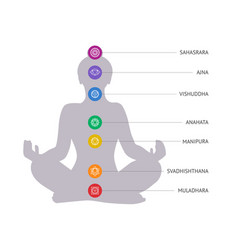 Chakras concept woman silhouette in lotus vector