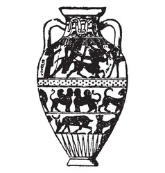 Amphora are jars with narrow necks and two vector