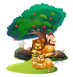 Lion family and monkey in forest vector