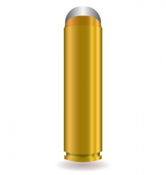 rifle bullet vector image vector image