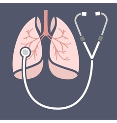 Stethoscope lungs icon vector