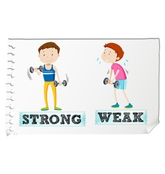 Opposite adjectives with strong and weak vector