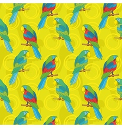 Seamless background parrots vector
