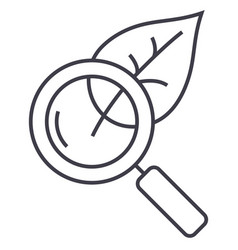 magnifier glass with leafbiology line icon vector image