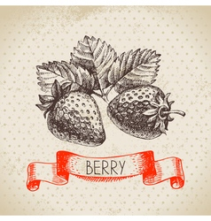 Strawberry Hand drawn sketch berry vintage vector image vector image