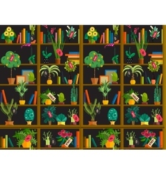 Indoor potted plants on shelves set isolated flat vector