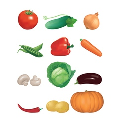 Collection of vegetables vector