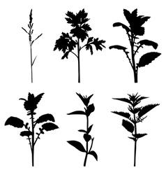 Grass set2 vector