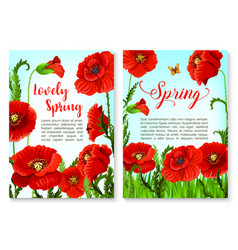 Springtime holidays poster with poppy flower vector