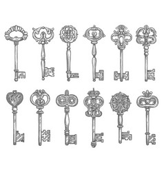 Old vintage key and antique skeleton sketch vector