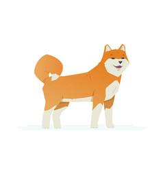 cute akita inu - modern cartoon characters vector image vector image