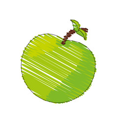 Drawing green apple food image vector