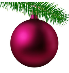 rose matte christmas ball or bauble and fir branch vector image