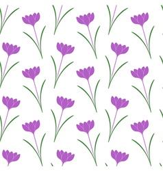 Saffron vector image vector image