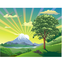 summer landscape the volcano at the lake the vector image vector image
