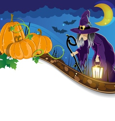 Witch and pumpkins vector image