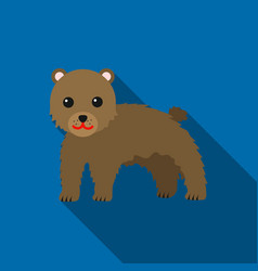 Bear icon flat singe animal icon from the big vector