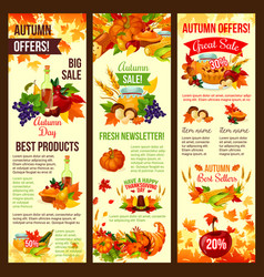 Autumn sale banner set of fall harvest celebration vector