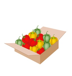 Fresh bell peppers in a shipping box vector