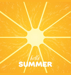 Orange pulp and hello summer text vector