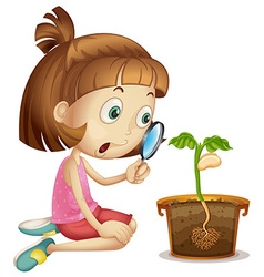 Girl observing plant growing in pot vector