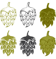 Set design template of beer hops vector