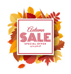 Autumn sale background template with bright leaves vector
