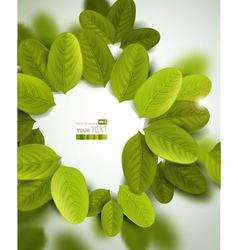 Leaves document template vector