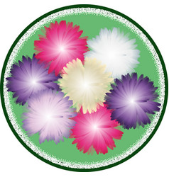 bouquet of asters vector image vector image