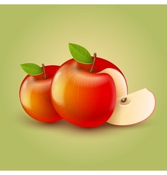 Red apples with cut vector image