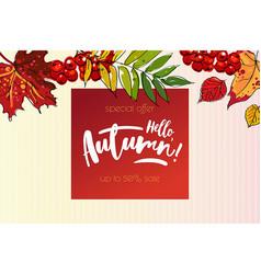 hello autumn sale background vector image